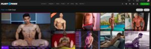 Flirt4Free Gay Review